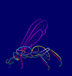 Insect 1-1 vector