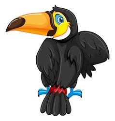 Back of toucan bird vector image