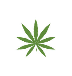 cannabis marijuana sign symbol vector image