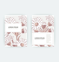 Card with flowers calendula chrysanthemum vector