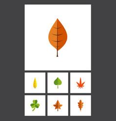 Flat icon foliage set aspen leaf hickory and vector