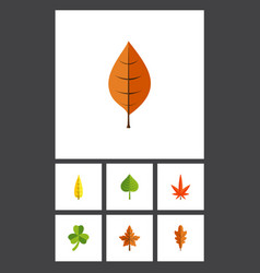 Flat icon foliage set of aspen leaf hickory and vector