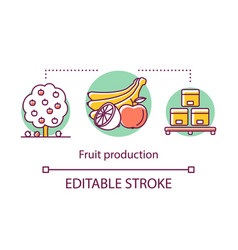 fruit production concept icon organic vegetarian vector image