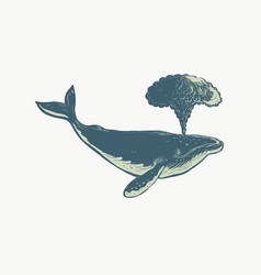 Humpback whale blowing water scratchboard vector