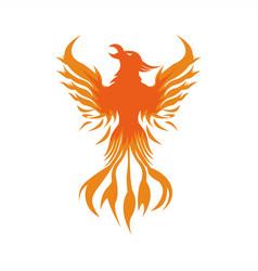 phoenix fire logo vector image