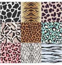 Animal skin texture set vector