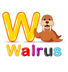 animals alphabet w is for walrus vector image