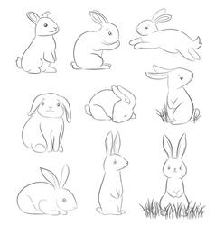 cartoon rabbits vector image