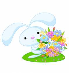 bunny boy vector image vector image
