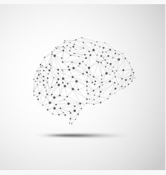 wireframe brain vector image vector image
