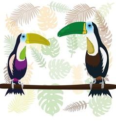 a couple toucans vector image