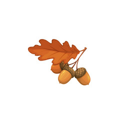 Autumn oak acorn with dry leaves icon sign vector
