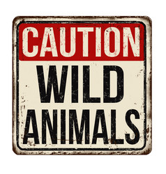 caution wild animals vintage rusty metal sign vector image