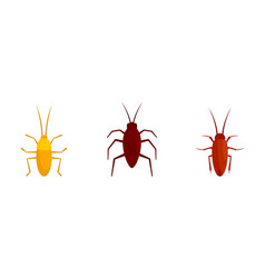 Cockroach icons set flat style vector