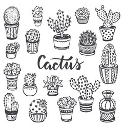 collection of hand drawn cactus in sketch style vector image vector image