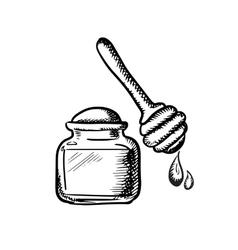 Honey jar with wooden dipper sketch vector image