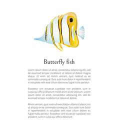 Aquarium butterfly fish exotic sea inhabitant vector