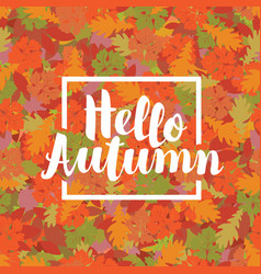 autumn banner with colorful autumn leaves vector image