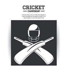 cricket championship game vector image