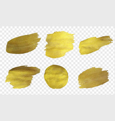 Golden paint set isolated transparent background vector