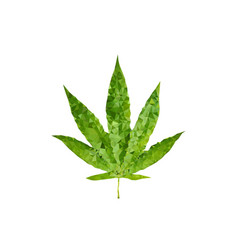 polygonal marijuana leaf vector image