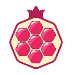 pomegranate cut icon vector image