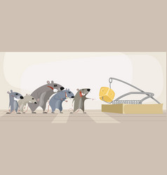 rodents and cheese in mousetrap vector image