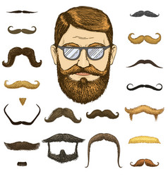 set of mustache and funny beard men and fashion vector image