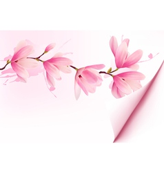 Spring background with blossom brunch of pink vector