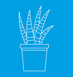 Succulent house plant icon outline style vector