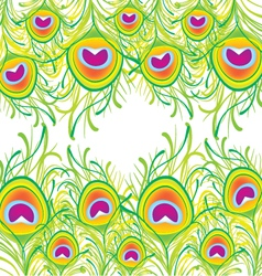 Peacock feather background vector image