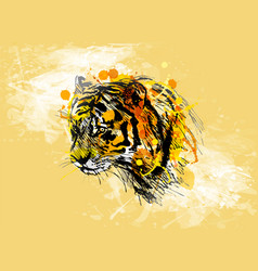 Colored hand sketch of the head of the tiger vector