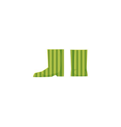 flat baby kid rubber boots isolated vector image