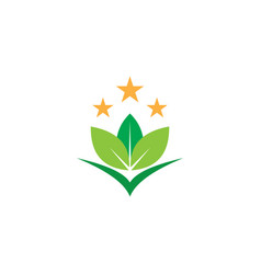 leaf eco star logo vector image