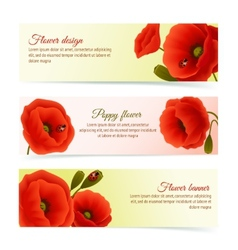 Poppy horizontal banner set vector