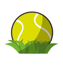 Tennis ball sport vector