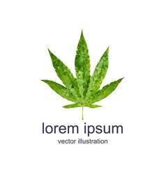 polygonal marijuana leaf vector image