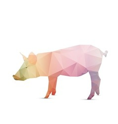 Abstract pig vector image