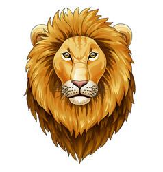 animal lion leo art basic book cartoon char vector image