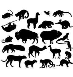 animals north and south america vector image