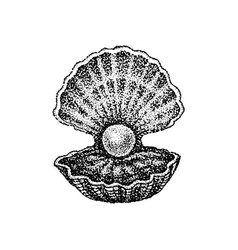 Dotwork shell with pearl vector