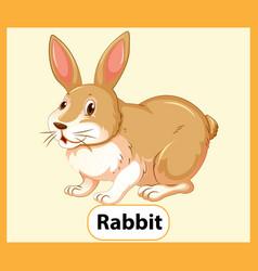 educational english word card rabbit vector image