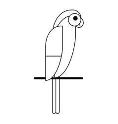 exotic bird on stick black and white vector image
