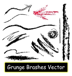 Graphic brushes vector