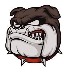 Head angry bulldog vector