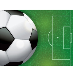 Soccer Ball on Grass Textured Field vector image