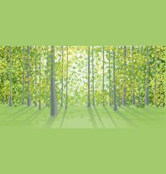 Summer landscape in the dense forest vector