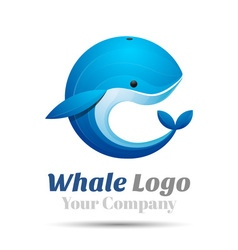 Whale volume logo colorful 3d design corporate vector