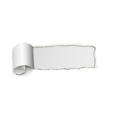 Frame hole with ragged edges from tear of paper vector
