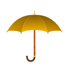 Umbrella in orange design vector